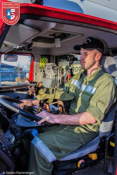 eine dienstuniform f 252 r den kleinsten feuerwehrhund benjamin wurde eingekleidet freiwillige