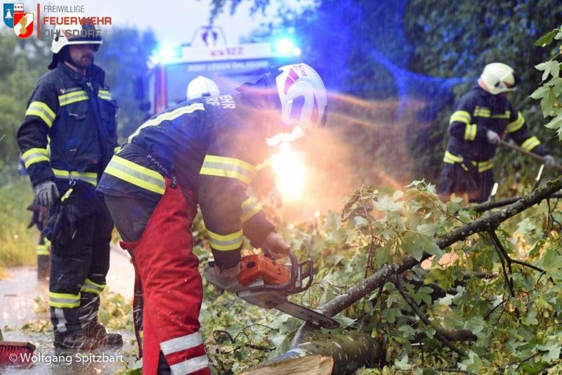 Heftige Unwetter in Oberösterreich mit umgestürzten Bäumen, Sturmschäden und Überflutungen